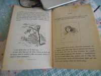 pinocchio 1883 prime edizioni.JPG